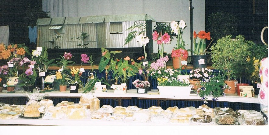 Flower Show pic