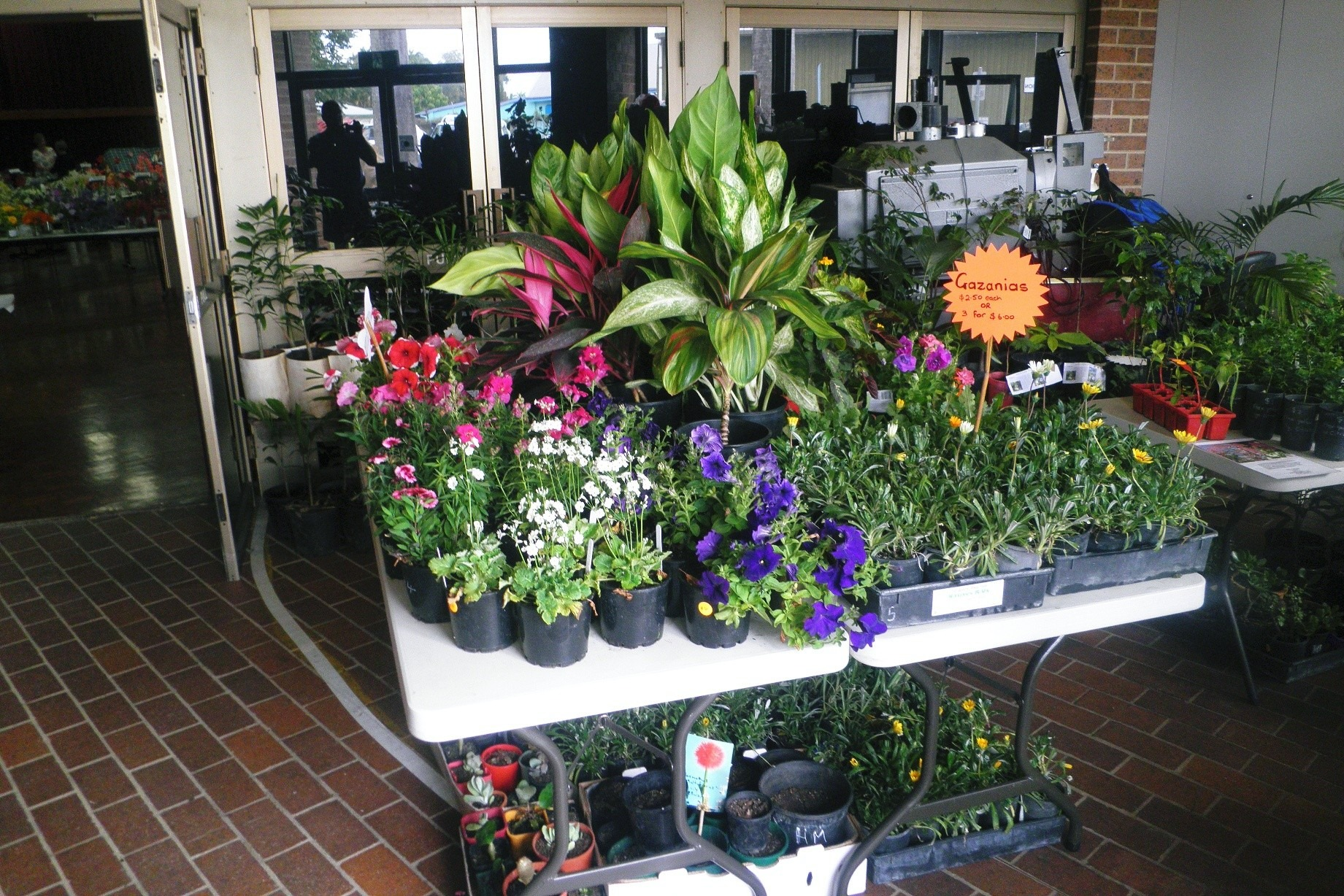 Plant Stall Flower Show